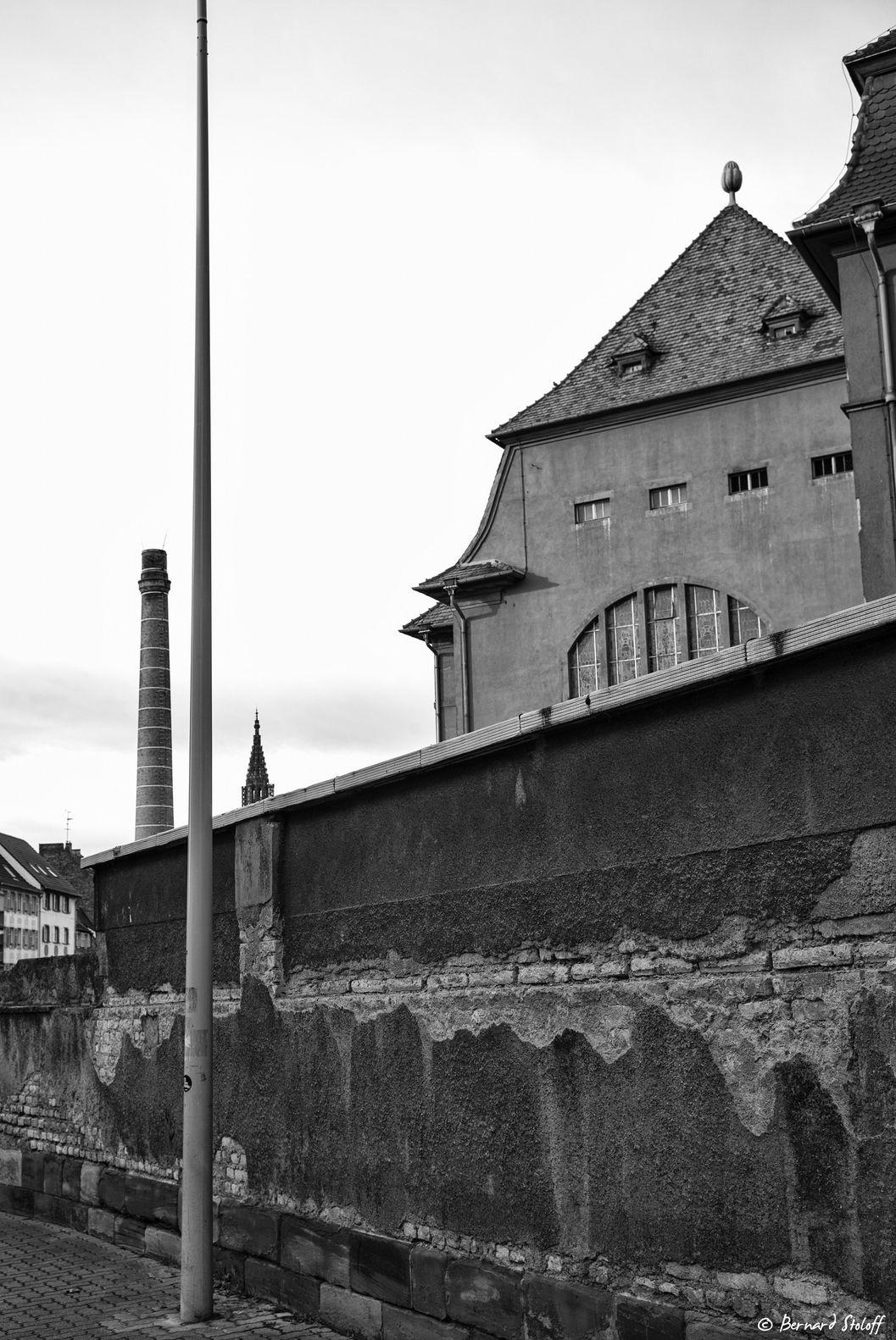 LA CATHEDRALE DE STRASBOURG MILLENAIRE