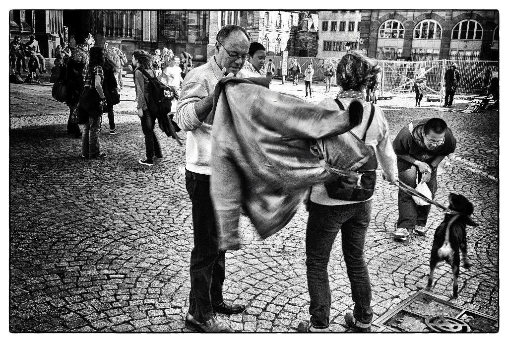 le chien et le touriste devant la cathédrale de strasbourg millénaire