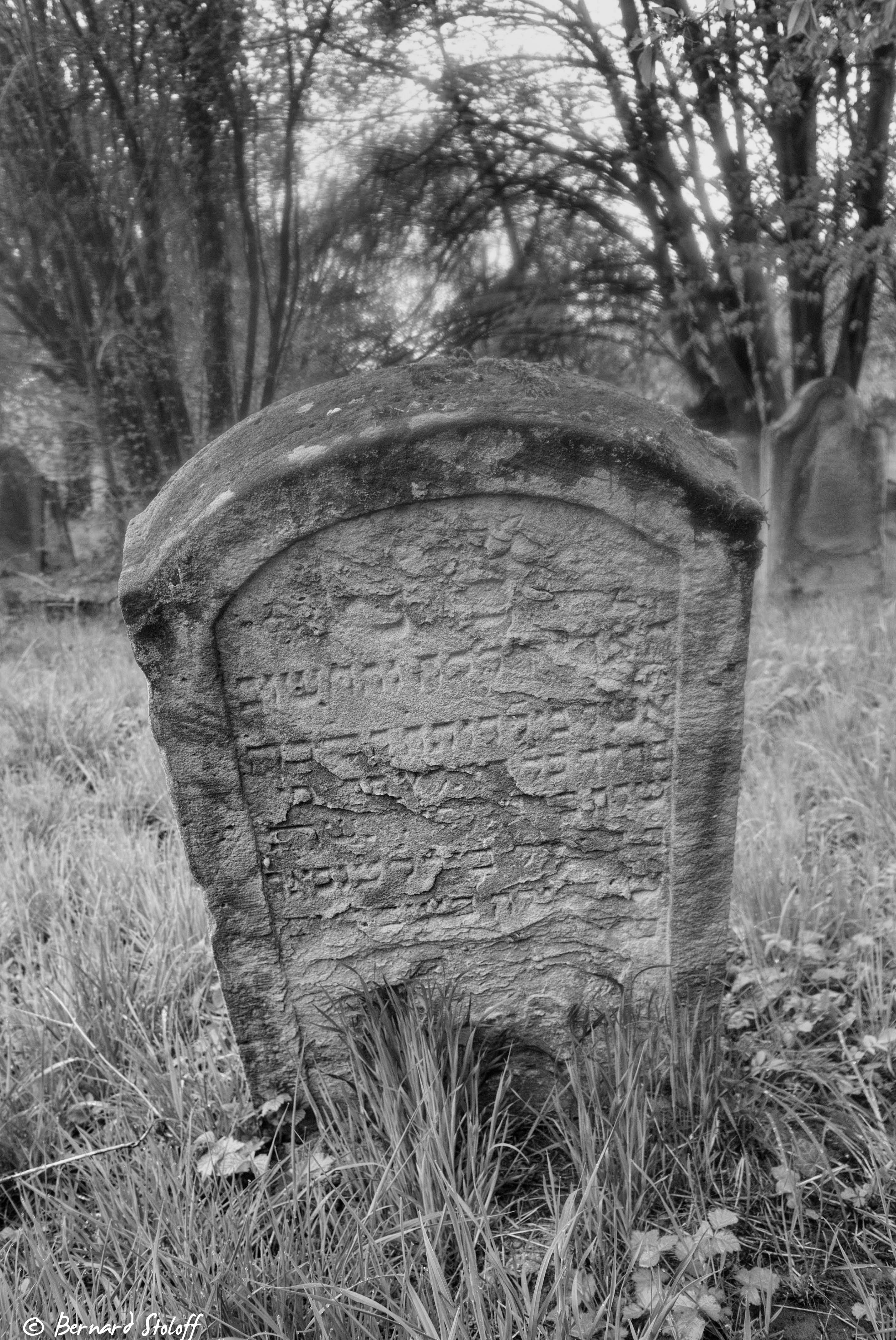 JEWISH CEMETERY IN WISSEMBOURG-FRANCE-WHERE MY FORE-GRAND PARENTS ARE RESTING.